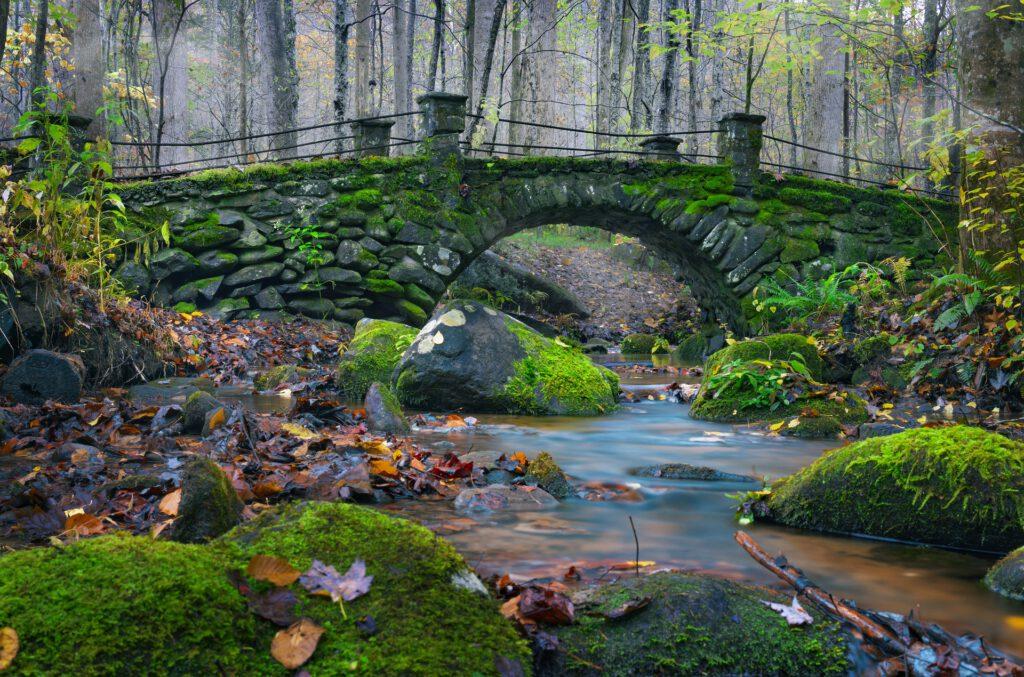 Wenn du über eine Brücke gehst, lässt du Altes zurück und betrittst Neuland